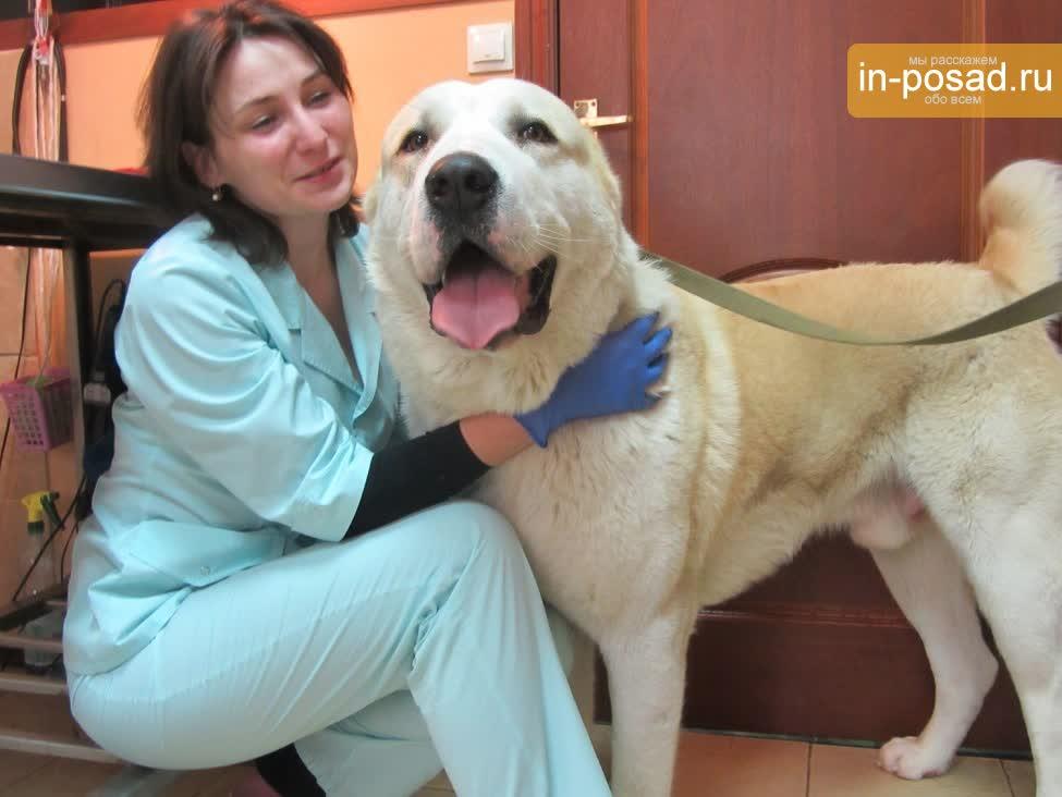 ветеринарные клиники отзывы: